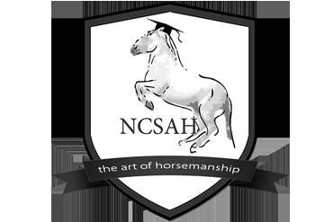 NCSAH Category winner: Education