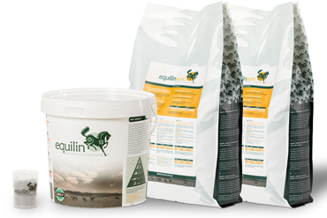 Equilin Basic Supplements Winner
